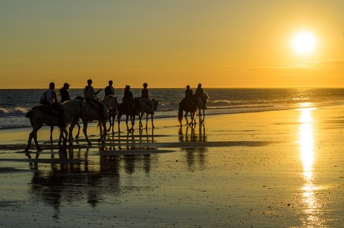 Paseos a caballo en Valencia