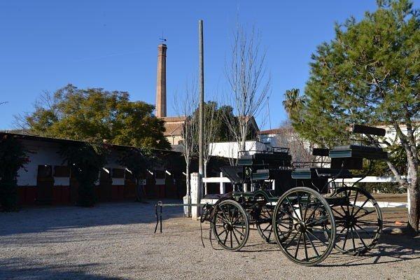 Hipica Valencia Instalaciones